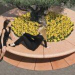 Corolla jardinera banco circular