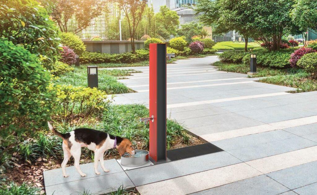 Fuente urbana para perros